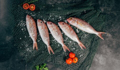 RetNemt fiskekasser